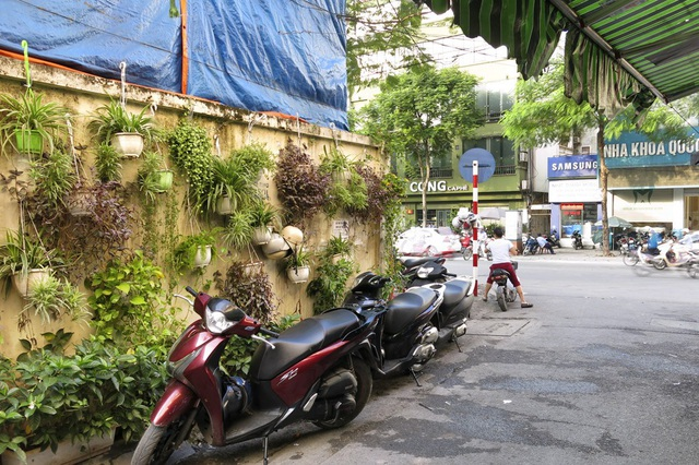 Nhiều người qua đường chó biết họ cảm thấy rất dễ chịu, mát mắt khi nhìn thấy những vườn treo nhỏ xinh này.