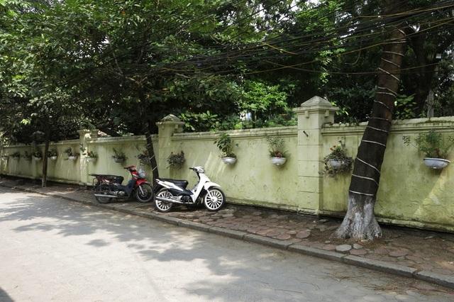 Ngõ 250 phố Khương Trung (quận Thanh Xuân), hàng trăm chậu hoa được treo trên bức tường kéo dài gần hết ngõ.