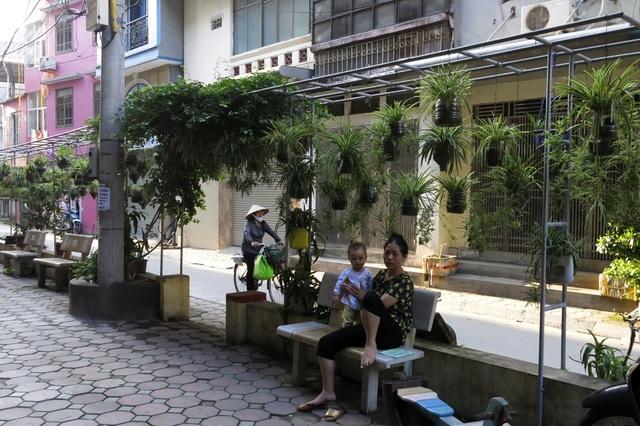 Tại khu vực ngõ 167 phố Phương Mai (quận Đống Đa) cũng có một vườn hoa treo xanh mướt. Cách đây 2 năm, khu vực này là một bãi rác khi bị người dân đổ phế thải vô tội vạ.