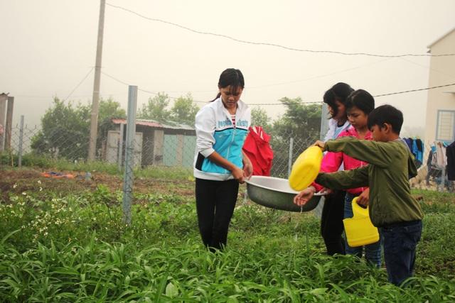Cùng với việc học tập, các em học sinh vùng cao còn được các giáo viên hướng dẫn chăm sóc rau, cải thiện bữa ăn.
