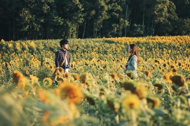 Nhắm mắt thấy mùa hè đại diện Việt Nam tranh giải cùng 11 tác phẩm điện ảnh quốc tế.