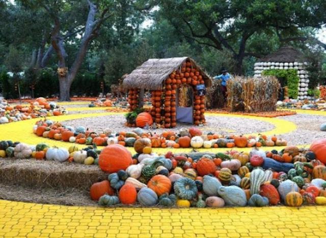 Lễ hội ma quỷ, đến thăm ngôi làng làm từ gần 100.000 quả bí ngô ở Mỹ - 5