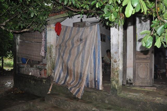 Căn nhà của mẹ con bà Thành lụp xụp khuất dưới bóng những cây hồng xiêm.