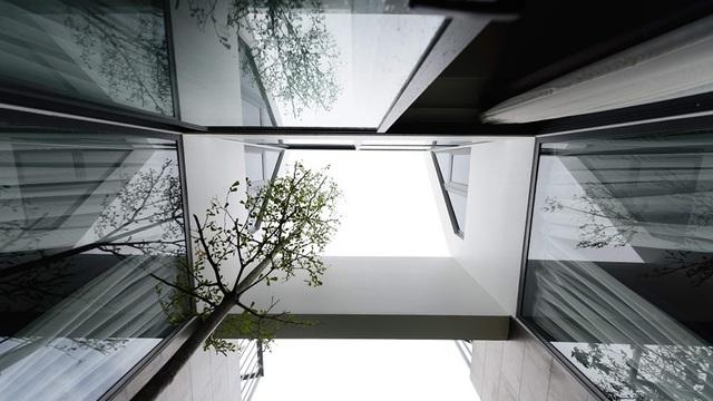 Hệ thống giếng trời của căn biệt thự này khá độc đáo, tận dụng không gian và khí trời thoáng mát