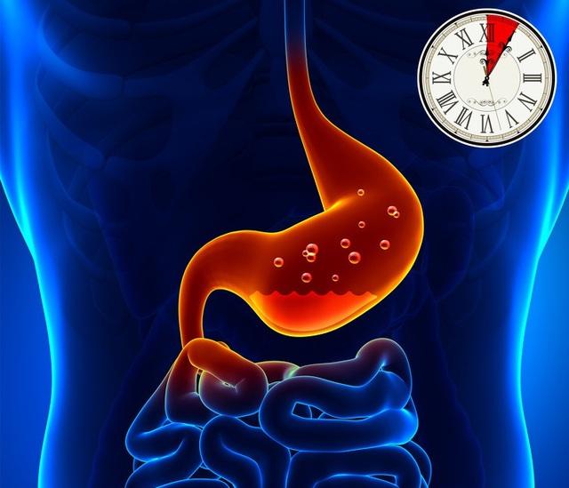 Mất bao lâu để tiêu hóa hết thực phẩm nạp vào cơ thể? - 2