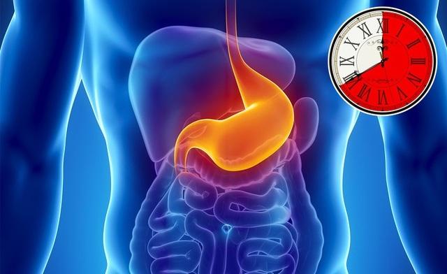 Mất bao lâu để tiêu hóa hết thực phẩm nạp vào cơ thể? - 3