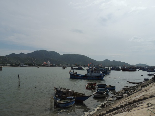 Không chỉ có hải sản tươi sống, ở đây còn có phong cảnh hữu tình, làng chài bình yên