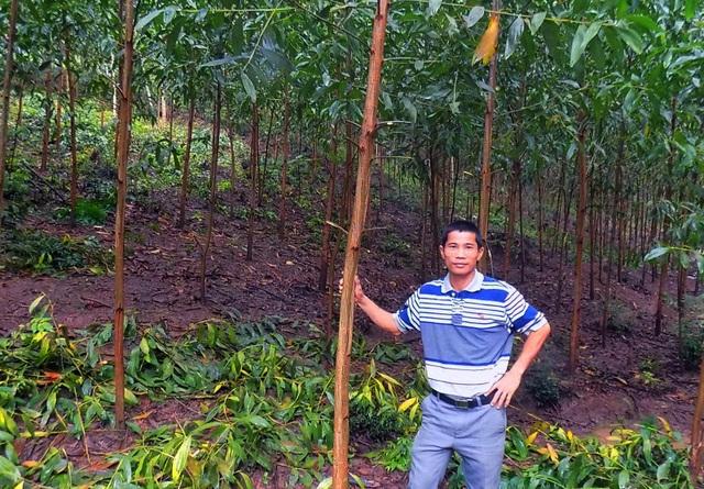 Sau 15 năm cần mẫn, anh Điện đã xây dựng được cơ ngơi 200 ha rừng trồng