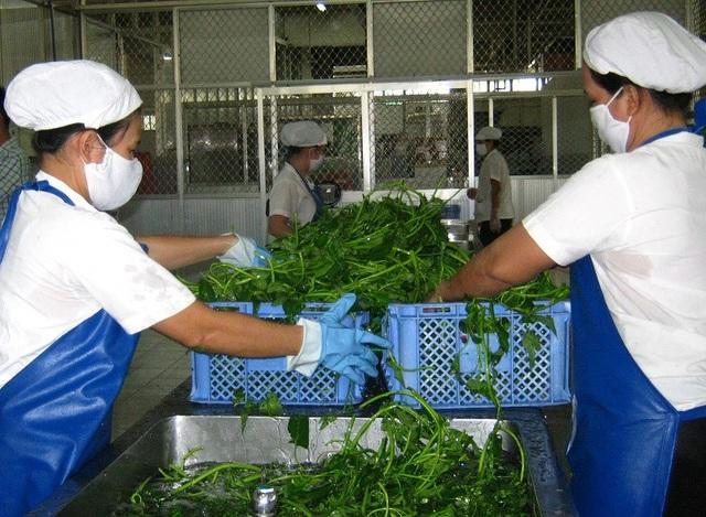 Cần đảm bảo an toàn trong sản xuất, kinh doanh, chế biến, vận chuyển, bảo quản thực phẩm