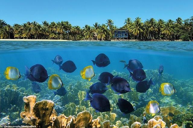 """Panama, đứng thứ 4 trong danh sách quốc gia hấp dẫn nhất. Đó là một """"sự đa dạng nhiệt đới""""."""