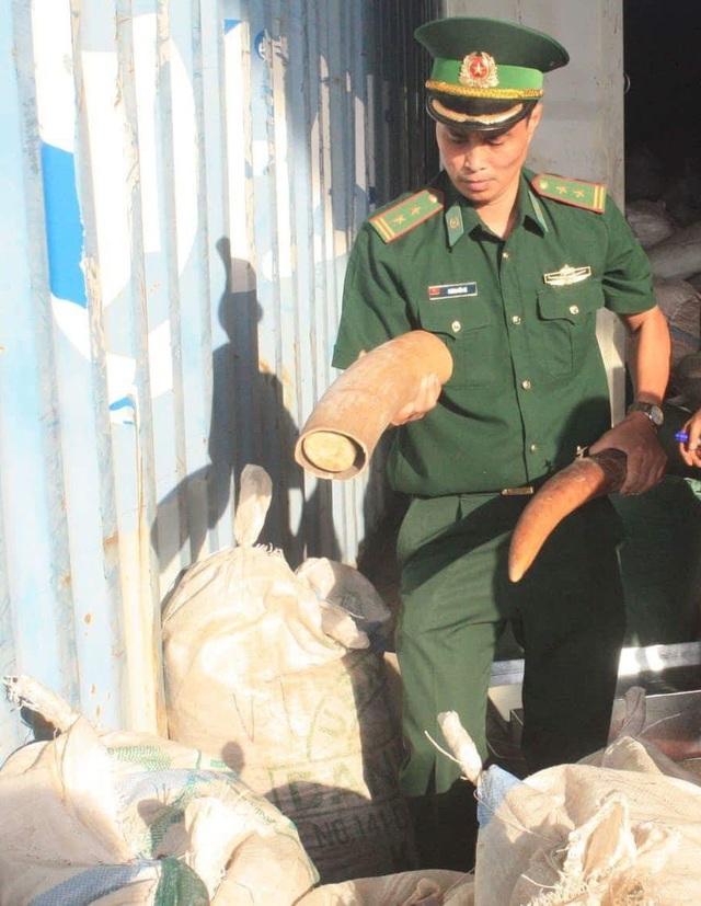Ngà voi cắt khúc bên trong container của công ty TNHH Thiên Trường Sử nhập về cảng Tiên Sa