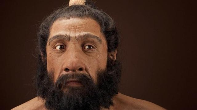 ADN của người Neanderthal chứa các gien giúp loài người sống sót qua bệnh cúm.