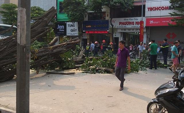 Hà Nội: Cây đa cổ thụ đổ chắn ngang đường, nhiều người hốt hoảng - 2