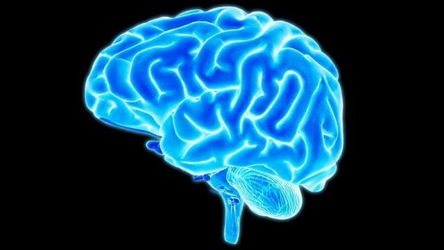Não tổ chức những kí ức có thể quên, không thể xóa trong khi ngủ - 1