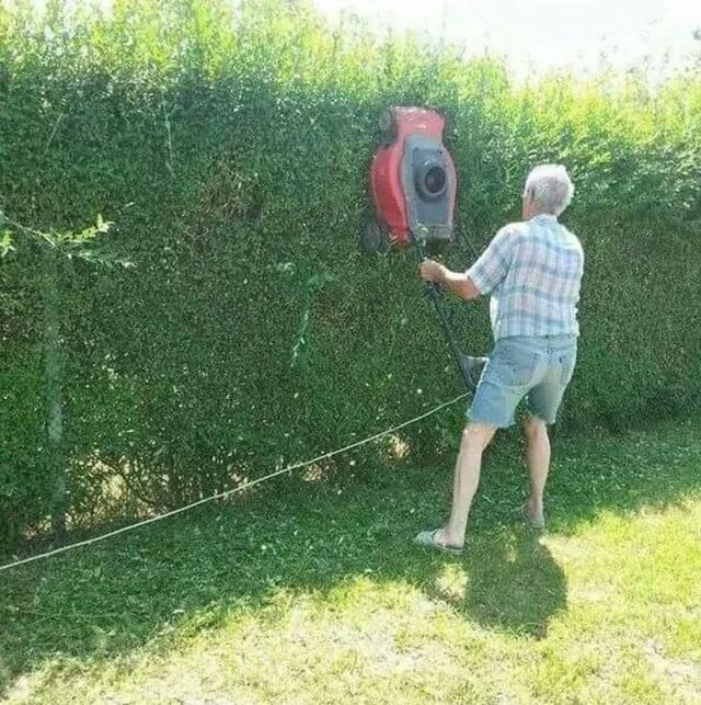 Chắc chắn rằng công suất của một chiếc máy cắt cỏ sẽ cao gấp vài lần một cây kéo thủ công. Tuy nhiên, vẫn còn nhiều yếu tố khác cần phải xét đến với ý tưởng khác người này.