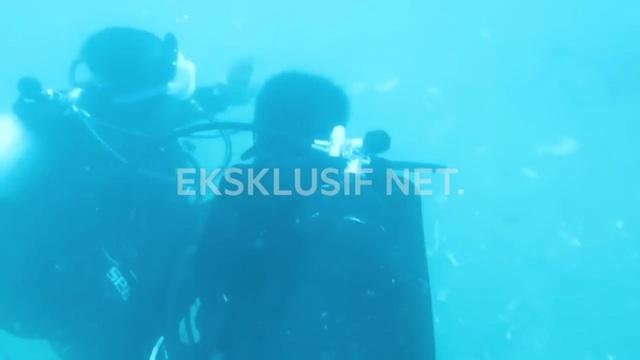 Các thợ lặn tìm kiếm xác máy bay dưới biển.