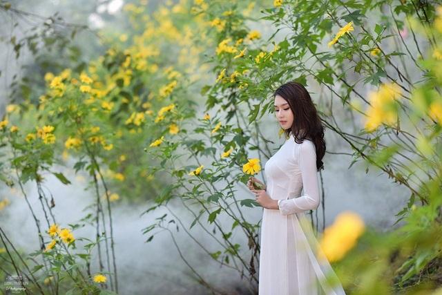 Tháng 11, mùa hoa dã quỳ bắt đầu nở rộ trên Vườn Quốc gia Ba Vì (Hà Nội) gọi mời khách thăm quan đổ về vãn cảnh ngắm hoa, đặc biệt là các bạn trẻ.