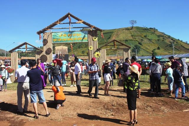 Lễ hội hoa dã quỳ - núi lửa Chư Đăng Ya đã thu hút hàng nghìn lượt người tham dự