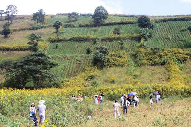 Các du khách hào hứng với hành trình chinh phục ngọn núi lửa Chư Đăng Ya huyền thoại
