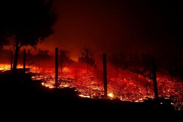 Lửa cháy khiến khu vực Thousand Oaks, California trông như khung cảnh ngày tận thế (Ảnh: Reuters)