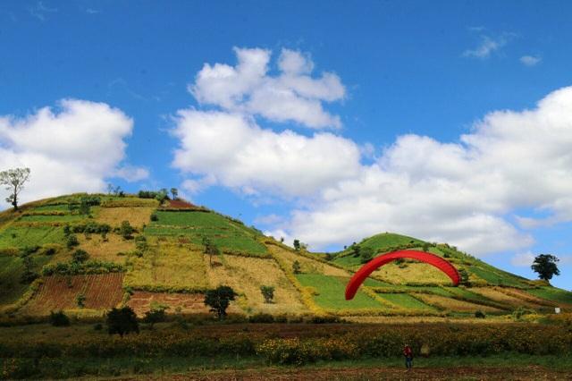 Hoạt động trình diễn dù lượn được diễn ra suốt chương trình lễ hội hoa dã quỳ - núi lửa Chư Đăng Ya