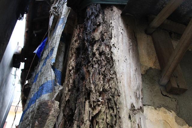Cột nhà bị mối mọt xâm hại.