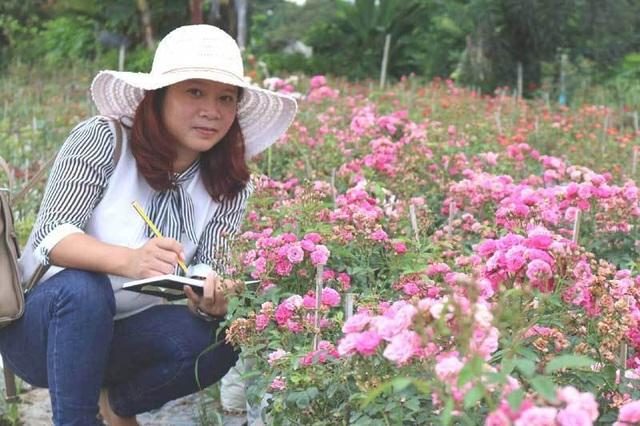 Chị Tuyết dự tính sẽ tiếp tục mở rộng diện tích vườn hoa để có nguồn nguyên liệu làm trà, đáp ứng được một phần nhu cầu của thị trường