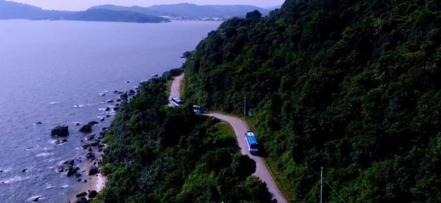 Phú Quốc có hệ sinh thái đa dạng, phong phú khi không chỉ nổi tiếng với bãi biển đẹp, đảo ngọc còn hấp dẫn du khách với những cánh rừng tự nhiên xanh bạt ngàn
