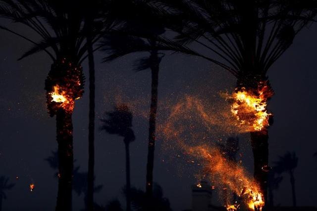 Tổng cộng, Camp Fire đã phá hủy hơn 6.700 công trình, con số tàn phá cao kỷ lục trong lịch sử California, bao gồm 6.453 ngôi nhà, theo cơ quan chức năng.
