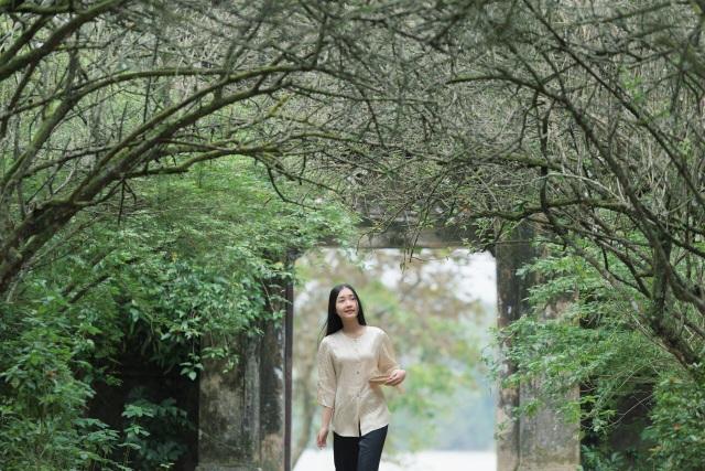 Nàng thơ xứ Huế là câu chuyện thường nhật của nhân vật được gọi là Nàng tại ngôi nhà vườn quanh năm cây trái của mình.