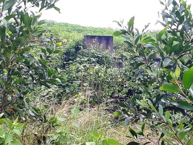 Khung cảnh hoang tàn nơi Làng TNLN Sông Chàng.