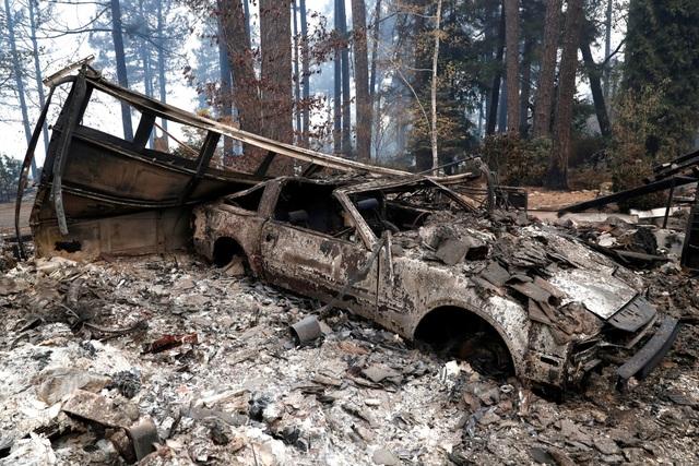 """Thoát chết khỏi """"biển lửa"""" cháy rừng ở California nhờ chạy theo cáo - 4"""