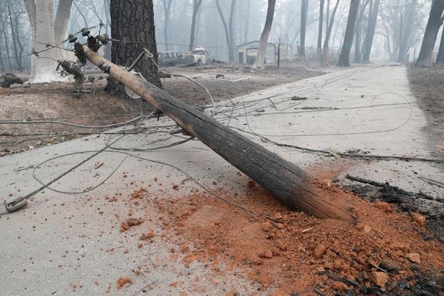 """Thoát chết khỏi """"biển lửa"""" cháy rừng ở California nhờ chạy theo cáo - 5"""