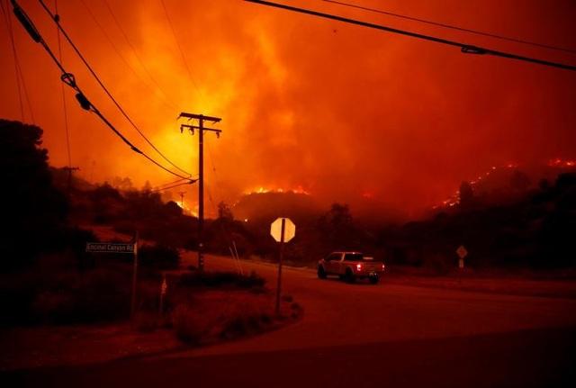 """Thoát chết khỏi """"biển lửa"""" cháy rừng ở California nhờ chạy theo cáo - 8"""
