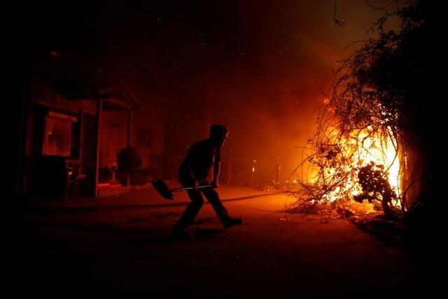 """Thoát chết khỏi """"biển lửa"""" cháy rừng ở California nhờ chạy theo cáo - 9"""
