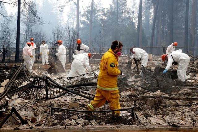 """Thoát chết khỏi """"biển lửa"""" cháy rừng ở California nhờ chạy theo cáo - 11"""