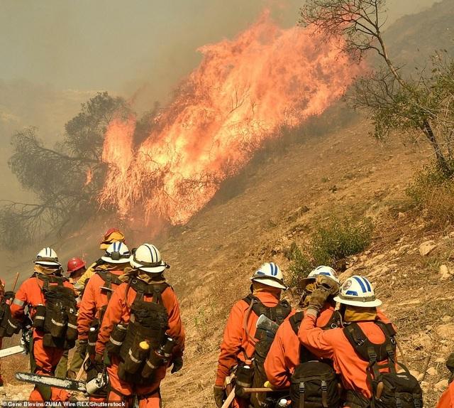 Tính đến hiện tại, chỉ có khoảng 40% ngọn lửa trong vụ cháy Camp Fire được kiểm soát. Sẽ có thể mất vài tuần để dập được hoàn toàn ngọn lửa. (Ảnh: Rex)