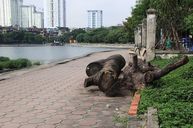 Tuy nhiên thời gian gần đây, công viên Indira Gandhi đang có những biểu hiện xuống cấp. Lối đi trong công viên, gạch vỡ vụn, nằm ngổn ngang, nhiều thân gỗ lớn nằm chềnh ềnh ngay trên lối đi bộ ven hồ.