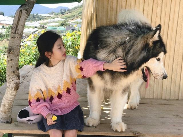 Vốn là người mê cún, Chiko nhanh chóng có những cử chỉ yêu thương và nhờ mẹ chụp ảnh kỷ niệm.