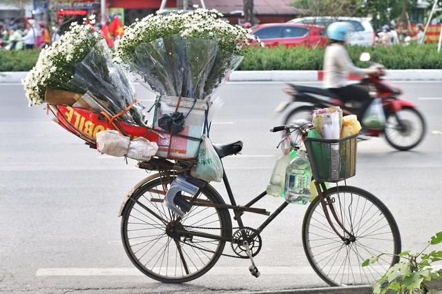 """Sáng sớm, những bông cúc họa mi """"theo chân"""" những chiếc xe đạp cũ, mang sắc trắng tinh khôi rong ruổi khắp phố phường."""