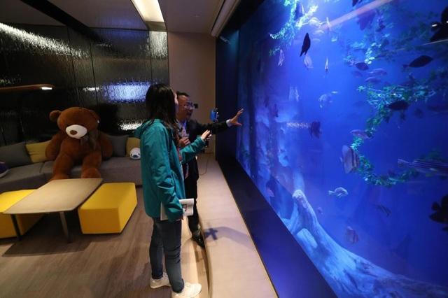 Du khách có thể ngắm nhìn hồ cá nhân tạo qua lớp kính trong suốt