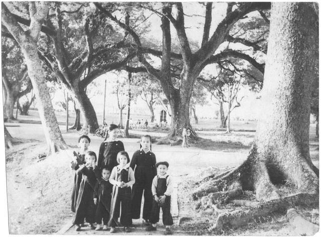 Hình ảnh tư liệu về Lớp mẫu giáo Bách Thảo ở Hà Nội