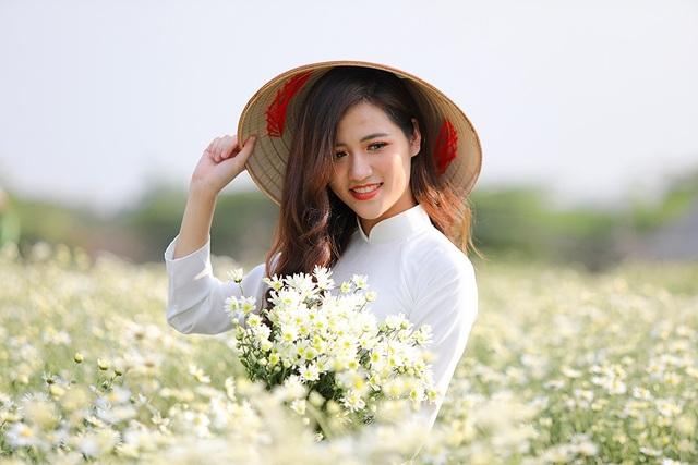 Bạn Lê Minh Quỳnh chia sẻ: Tuy cúc mới chỉ đầu mùa nhưng đã rất đẹp, mình quyết định đi chụp ảnh ngay vì mùa cúc qua đi rất nhanh.