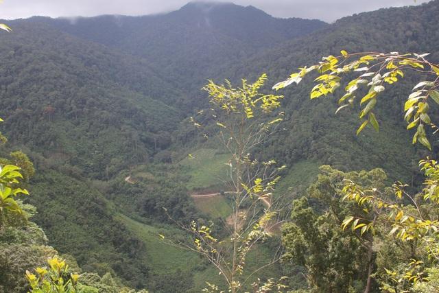Ngôi trường Kon Pne nằm sâu trong vùng lõi vườn quốc gia Kon Ka Kinh. Đây cũng là con đường mà hàng tuần thầy Thể vượt 400km về thăm nhà
