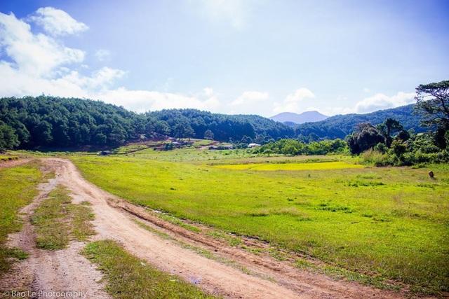 Hai bên đường dẫn vào rừng là những cánh đồng cỏ xanh bạt ngàn trùng trùng điệp điệp, nối tiếp nhau đến chân trời. Phong cảnh thiên nhiên hùng vĩ, nên thơ ở Tà Năng khiến du khách có cảm giác như lạc vào chốn thần tiên.