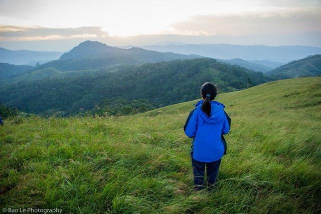Cảnh sắc mùa cỏ xanh ở Phan Dũng khiến ta như lạc vào một thế giới khác, với những thảm cỏ xanh bạt ngàn, nối tiếp nhau đến tận chân trời. Có lẽ vì thế mà đây được xem là thời gian lý tưởng để thực hiện chuyến đi trek, khám phá cung đường được mệnh danh là đẹp nhất Việt Nam này.
