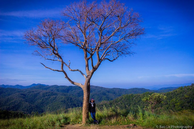 Tà Năng – Phan Dũng vào độ tháng 11, thời tiết không quá lạnh, mưa không nhiều nên thuận lợi để ngắm cảnh sắc thiên nhiên.