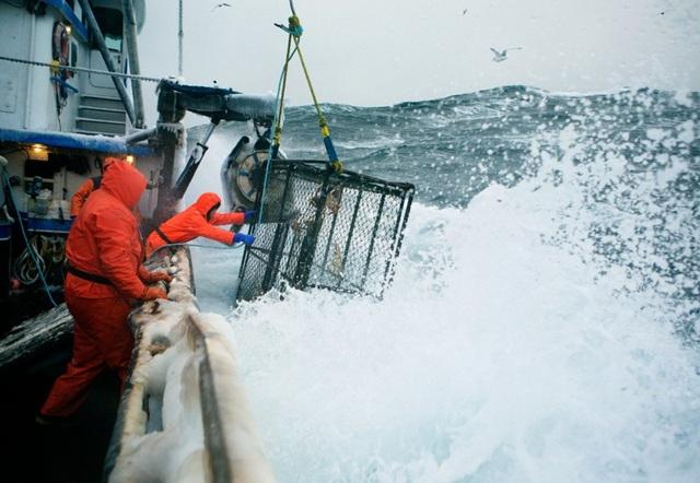 Tàu đánh bắt hải sản ở Alaska (Ảnh: BI)