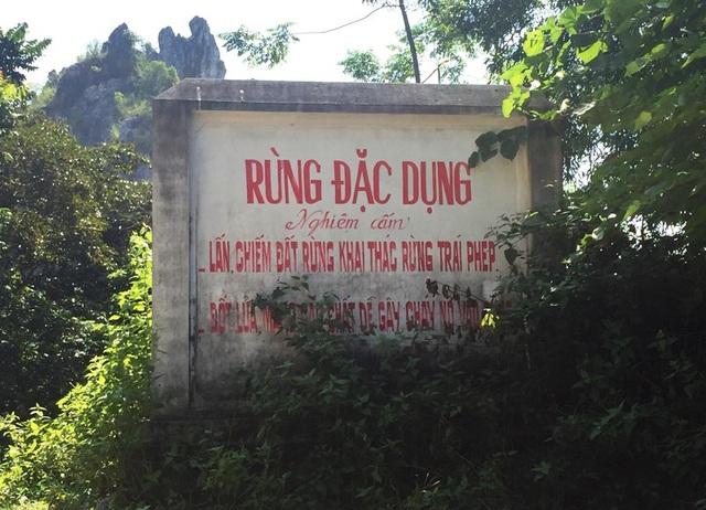 Khu vực rừng đặc dụng Hàm Rồng, thành phố Thanh Hóa.