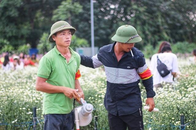 Đội bảo vệ phải liên tục đi quanh vườn kiểm tra và nhắc nhở mọi người không được bẻ hoa, nằm đè lên hoa gây dập, nát.